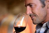 Detailní záběr na vinař vonící červené víno ve skle