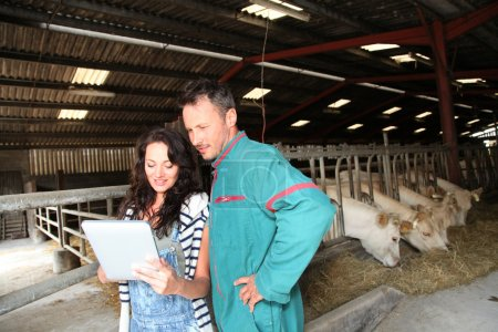 Couple of farmers using electronic tablet