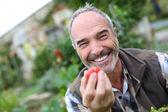 Starší muž zobrazeno rajčata