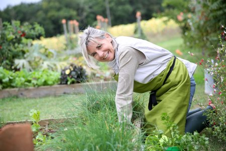 Senior woman planting herbs