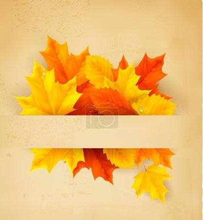 Illustration pour Feuilles d'automne colorées sur un vieux papier Retour à l'école Vecteur - image libre de droit