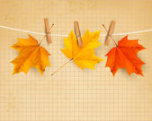 Podzimní pozadí s listy. zpátky do školy. vektorové illustrati