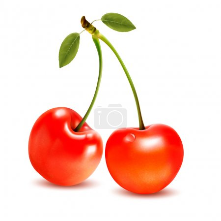 Illustration for Ripe red cherry berries with leaves. Vector. - Royalty Free Image