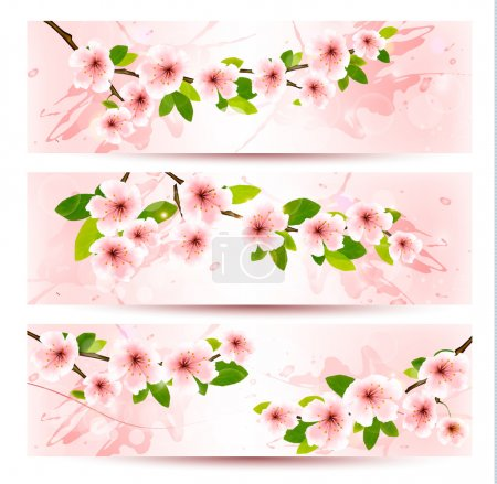 Illustration for Three spring banners with blossoming sakura brunch with spring flowers. Vector illustration. - Royalty Free Image