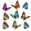 Set of realistic colorful vector butterflies....