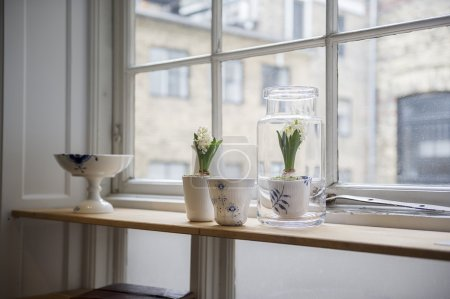 Photo pour Plantes d'intérieur dans des pots de fleurs décoratifs debout à la lumière du jour dans un appartement sur un long comptoir en bois avec vue sur d'autres appartements par la fenêtre - image libre de droit