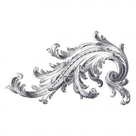 Illustration for Ancient vector engraving of acanthus scroll design - Royalty Free Image