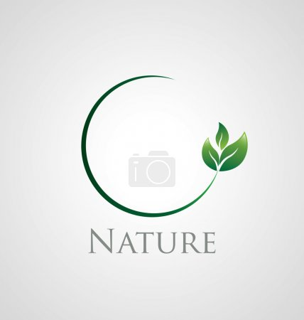 Illustration for Abstract nature icon with green leaves on a circle branch - Royalty Free Image