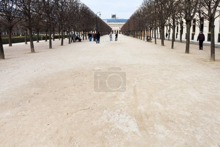 Palais Royal garden (Jardins du Palais-Royal) in Paris, France