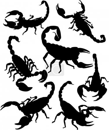 Illustration for Vector scorpion silhouette - Royalty Free Image