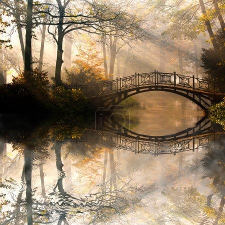 Photo pour Automne - vieux pont dans le parc automne brumeux - image libre de droit