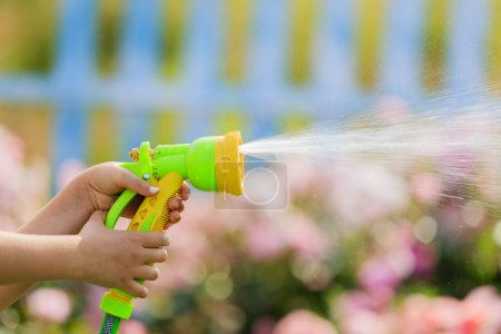 Watering,  garden - child watering roses with garden hose