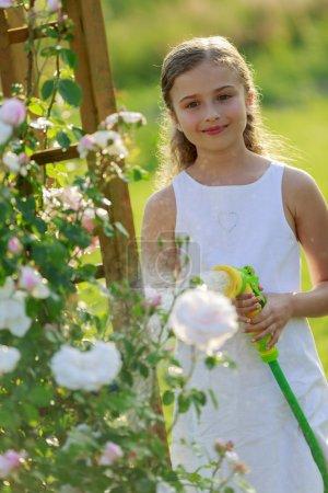 Summer garden, watering - beautiful  girl watering roses