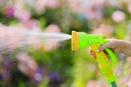Watering, flower garden - child watering roses with garden hose