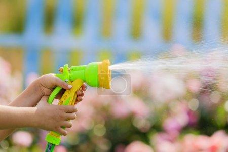 Watering, flower garden - child watering roses with garden hose