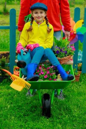 Gardening, planting - girl in barrow helping father