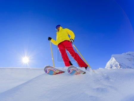 Ski, Skier, Woman - Freeride in fresh powder snow