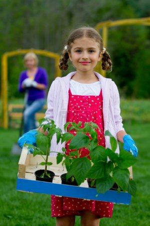 Gardening, planting concept - lovely girl working in the garden