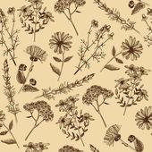 Medicinal herbs and plants.