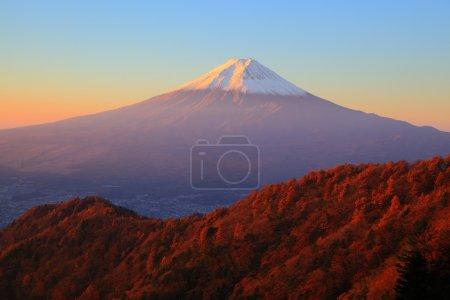 Mt. Fuji glows in the morning sun