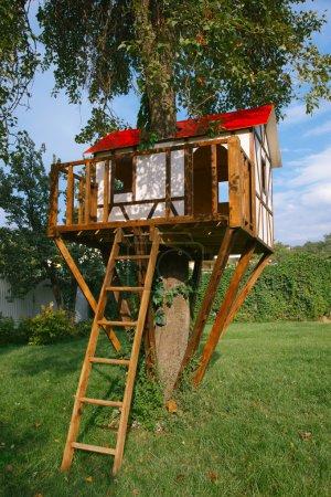 children tree house on backyard