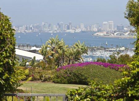 Photo pour Un point de vue jardin résidentiel point loma de San diego en Californie. - image libre de droit
