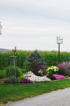 Garden and corn crop in Amish country
