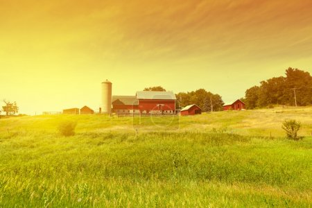 Photo for Traditional American Red Farm in Summer - Royalty Free Image