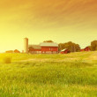 Traditional American Red Farm in Summer...