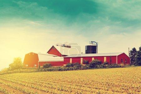 Foto de Granero rojo en granja - Imagen libre de derechos