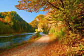Autumn landscape with The Dunajec River Gorge. Pieniny Mountains