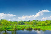 Spring landscape by The Narew braided river