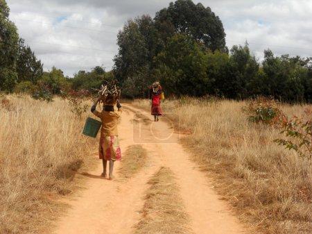 Photo pour Femmes africaines avec des seaux d'eau et de bois de chauffage Tanzanie - Afrique africain des femmes à la recherche de l'eau et du bois de nouveau à leurs huttes à la Mission franciscaine de - image libre de droit