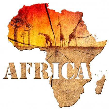 Photo pour Carte d'Afrique avec la texture du bois et paysage coloré de fantaisie, avec les baobabs et les girafes - image libre de droit