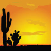 cactus black vector in desert illustration