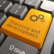 Training and Development, Orange Button on Computer Keyboard. Internet Concept.