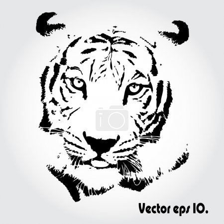 Photo for Tiger sketch isolated backgrond. - Royalty Free Image