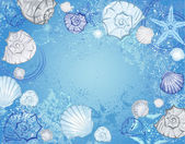 Blue background with sea shells