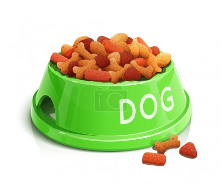bowl with dog feed