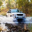 Autumn ride in forest on 4wd vehicle...
