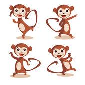 Cute dancing monkey