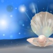 Vector shiny pearl in the shell with place for you...