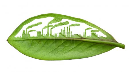 industrial city, cut the leaves of plants, isolated over white