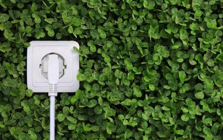 Foto de Concepto ecológico, símbolo de la energía renovable, bioenergía - Imagen libre de derechos