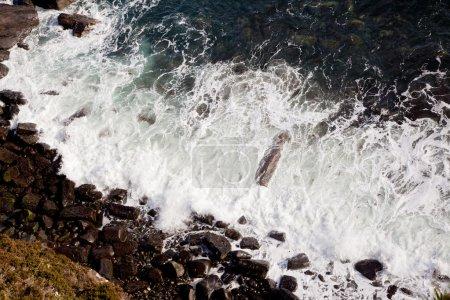 Ocean Wave Coastal