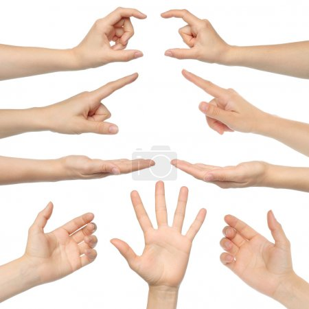 Photo for Collage of woman hands on white background - Royalty Free Image