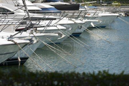 Yachts moored in marina