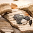 Ancient coins and broken earthenware...