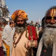 Постер, плакат: Guru teachers and holy men met on the biggest festival on Earth