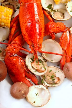 Photo for Boiled lobster dinner with clams, corn and potatoes - Royalty Free Image